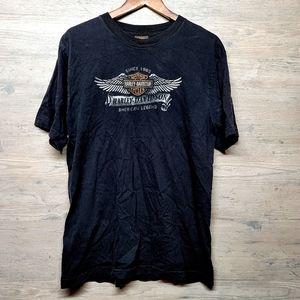 Vintage Harley Davidson Graphic T Shirt. Perfect!